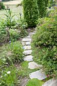 Geschwungener Weg aus Natursteinplatten, Rosa ( Rose ), Allium