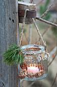 Haushaltsglas als Windlicht aufgehaengt, Pinus ( Kiefer ), Sterne aus Rinde