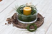 Windlicht mit Kranz aus Zweigen von Cytisus ( Ginster ) im breiten Glas