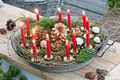 Weihnachtlicher Lichterzauber mit 13 roten Kerzen, Moos, Pinus