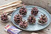 Selbstgemachte Anzünder für Kamin und Grill aus Zapfen von Picea