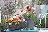 Korb mit frisch geschnittenen Ranunculus ( Ranunkeln ) und Kanne