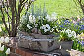 Grauer Betonkasten und Topf weiß bepflanzt :