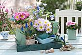 Auf Tabletts und alter Schublade gestaffeltes Frühlings-Arrangement :