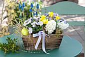 Hyacinthus 'White Pearl' ( Hyazinthen ), Viola cornuta Rocky 'Lavender Blush'