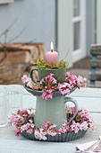 Blüten von Viburnum bodnantense 'Dawn' ( Winterschneeball,