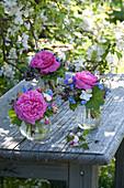 Kleine Sträuße in Gläsern : Rosa ( Rosen ), Aquilegia ( Akelei ), Viola cornuta
