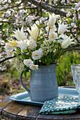 Weißer Strauß aus Tulipa 'Purissima' 'Budlight' ( Tulpen ), Narcissus