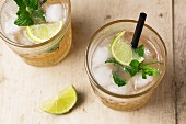 Cocktails with gin, ginger ale and mint