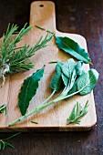 Fresh herbs on a chopping board