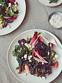 Winter salad (kales, beets, fennel, radish), toasted pumpernickel crumbs, homemade ricotta, candied walnuts or hazelnuts
