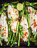 Oven baked sea bass with broccoli (Asia)