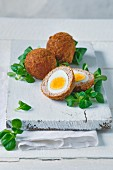 Scotch eggs for Easter