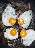 Four fried eggs on a rusty metal plate (top view)