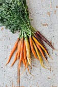 A bunch of fresh colorful carrots on a white wooden background (top view)