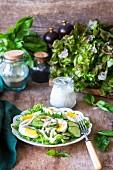 Blattsalat mit Gurken, Eiern und Calamari