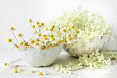 Elderflowers and fresh chamomile blossoms in papier-mâché bowls