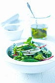 Green vegetable salad with chard, peas, asparagus and cucumber