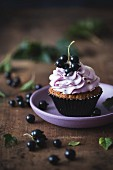 Blackcurrant and white chocolate cupcake on a plate