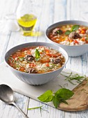 Rice soup with lamb and vegetables (Syria and Greece)