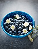 Blueberries with flowers in a blue bowl