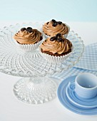 Cupcakes with coffee cream frosting and mocha beans on the top