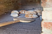 Homemade bread in a wood oven