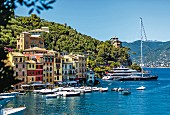 Boats and yachts in the harbour at Portofino, Liguria, Italy