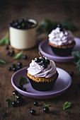 Cupcakes with black currant