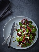 Beetroot salad with baby leaf spinach, feta, redcurrants and pine nuts
