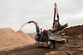 Wood chip fuel production, Scotland, UK