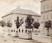 Nikola Tesla's childhood home, 1860s
