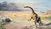 Prosauropod dinosaur, illustration