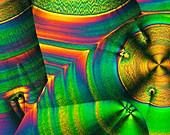 Vitamin C crystals, polarised light micrograph