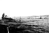 Salt Lake Oil Field, California, USA, 1906
