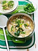 Chicken, Corn and Noodle Soup
