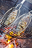 Mackerel in fish baskets on grille over fire pit