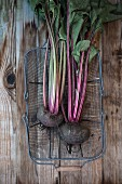 Beetroot (Beta vulgaris) in a wire basket
