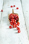 Freshly picked Cornelian cherries in a glass jar on a wooden scoop