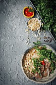 Pho with beef rice noodles and coriander (Vietnam)