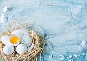 weiße Eier, ganz und aufgeschlagen, im Strohnest