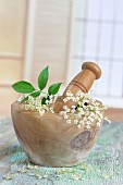 Fresh elderflowers in a wooden mortar