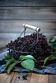Black elderberries in a wire basket