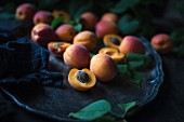 Fresh apricots on a metal tray
