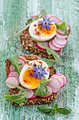 Slices of wholemeal bread topped with radish, egg and borage flowers