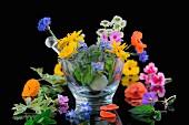 Verschiedene Heilblüten im Glasmörser