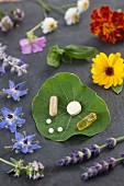 Various healing flowers, herbs and vitamin tablets