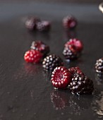 Freshly Picked Wild Wet Black Raspberries on Slate