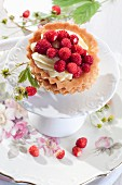 Tartlet with cream and wild strawberries