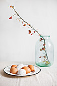Brown eggs and white, speckled eggs on enamel plate and flowering branch in glass jar